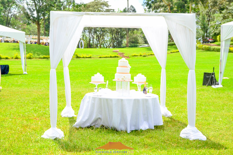 Ecoworld Canopies 14 - Tents hire in Kenya