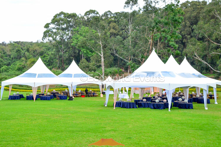 Ecoworld Hexagons16 - Tents hire in Kenya