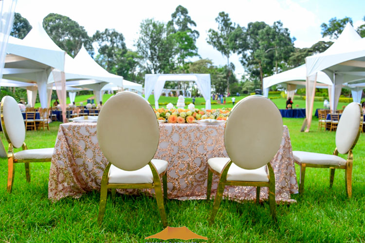 Ecoworld Banquet white - Chairs hire in Kenya